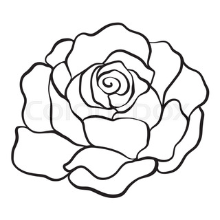 320x320 Isolated Rose. Outline Drawing. Stock Line Vector Illustration