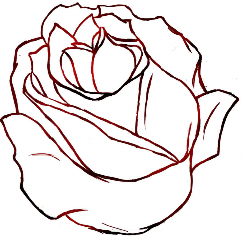 1024x1024 Rose Drawing Outlines Line Drawing Rose Clipartsco