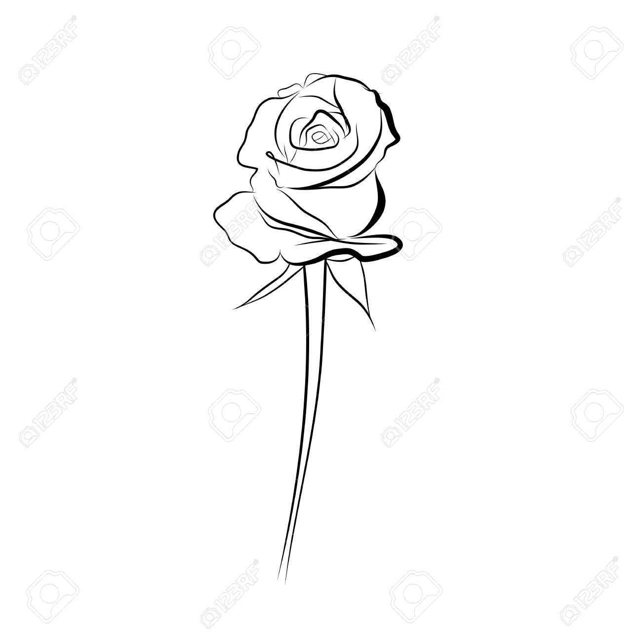 1300x1300 Sketch Line Drawing Of Rose Isolated Illustration On White
