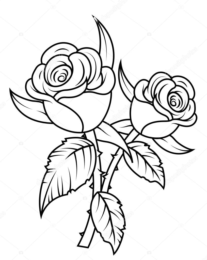 Line Drawing Of Rose : Rose line drawing free download best