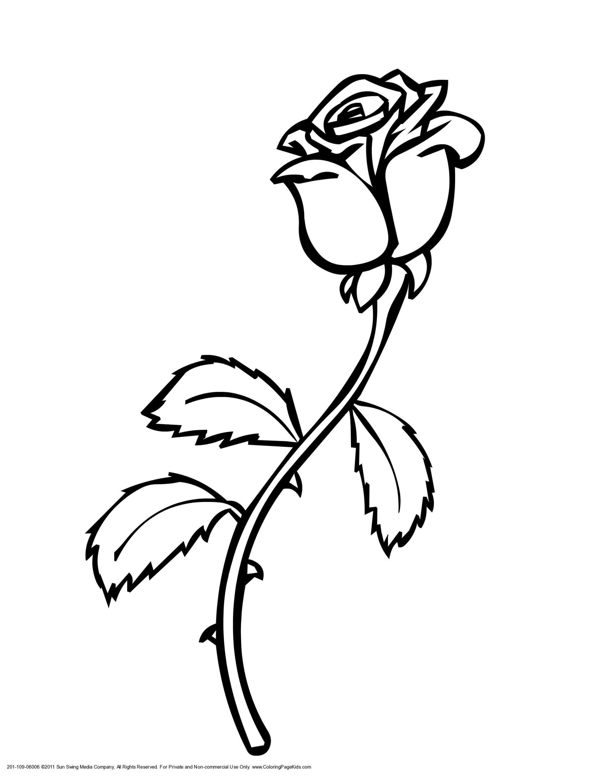 982a69bd2 2014x2607 Designs By Me Rose Custom Traditional Rose Line Drawing