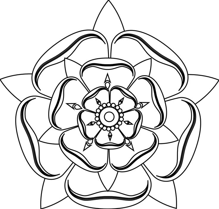 736x703 Download Rose Tattoo Line Drawing