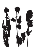 142x190 Rose From The Dead Clip Art, Vector Rose From The Dead