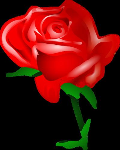 400x500 Red Rose Vector Art Public Domain Vectors