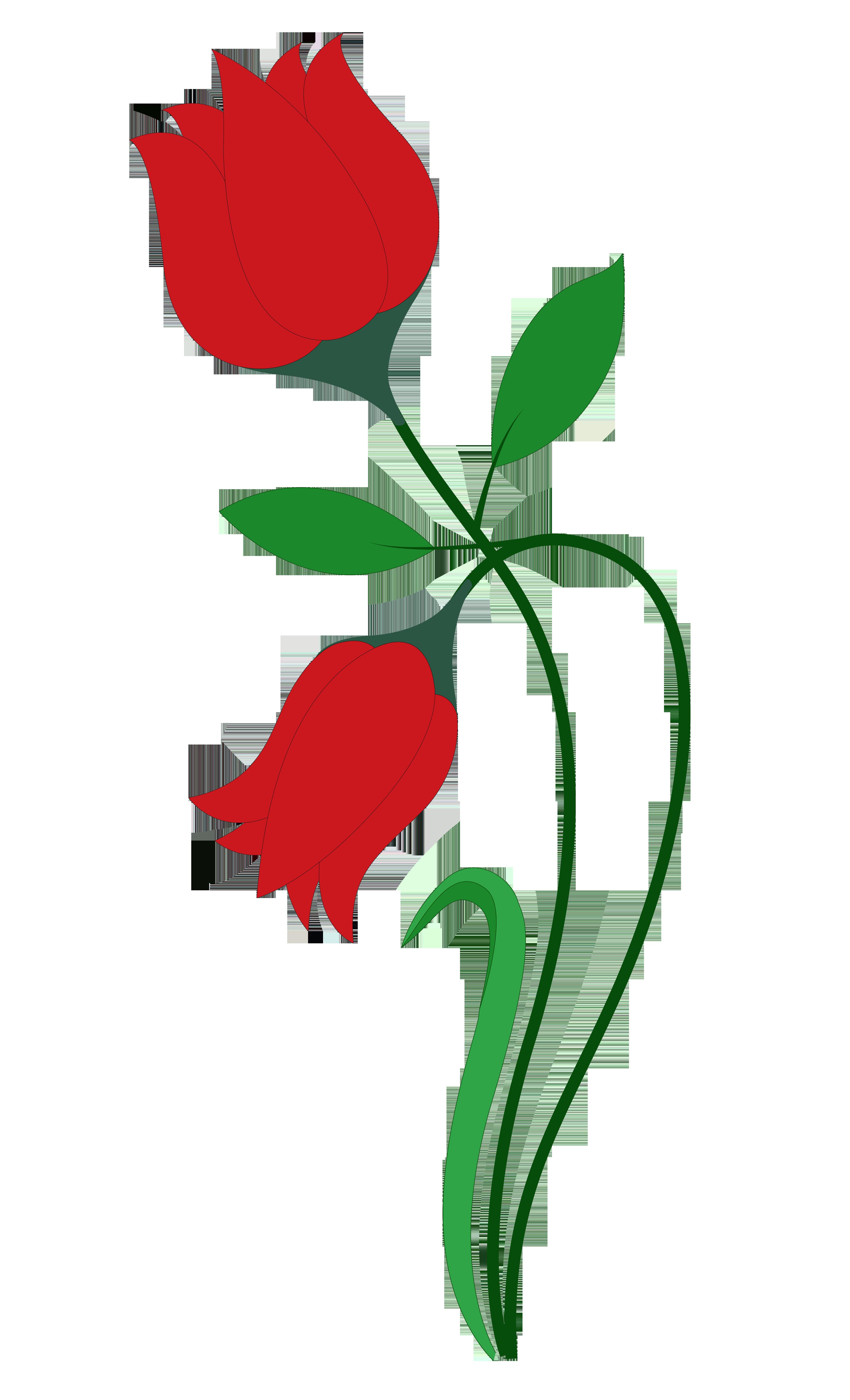 3400x5598 Rose Flower Vector Png Transparent Image