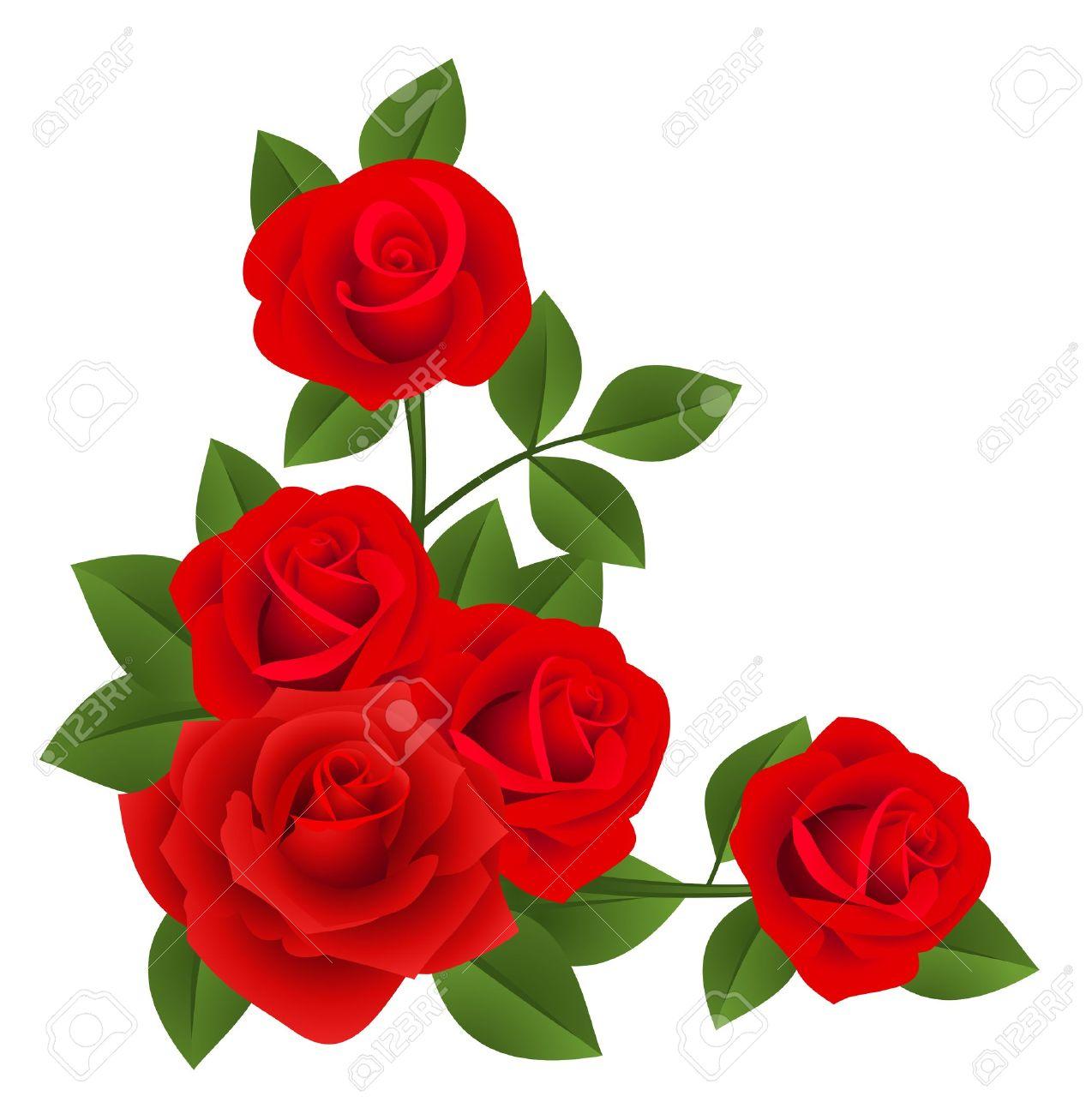 1274x1300 Rose Vectors