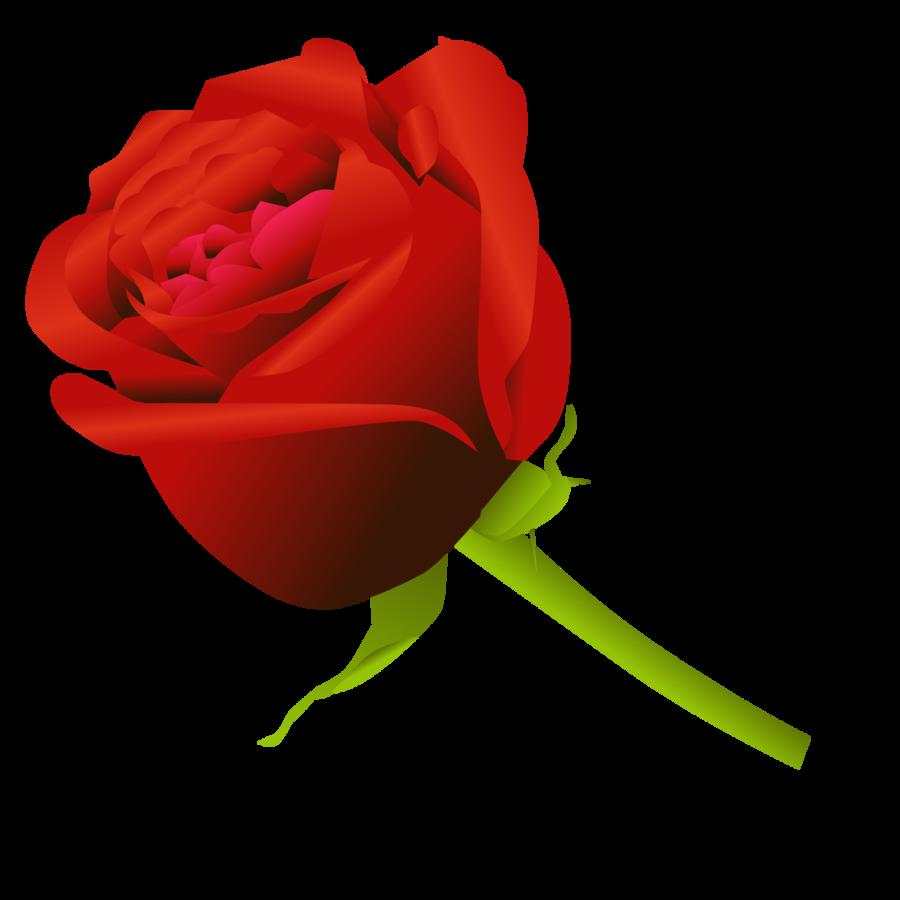 900x900 Simple Rose By Dekomaru