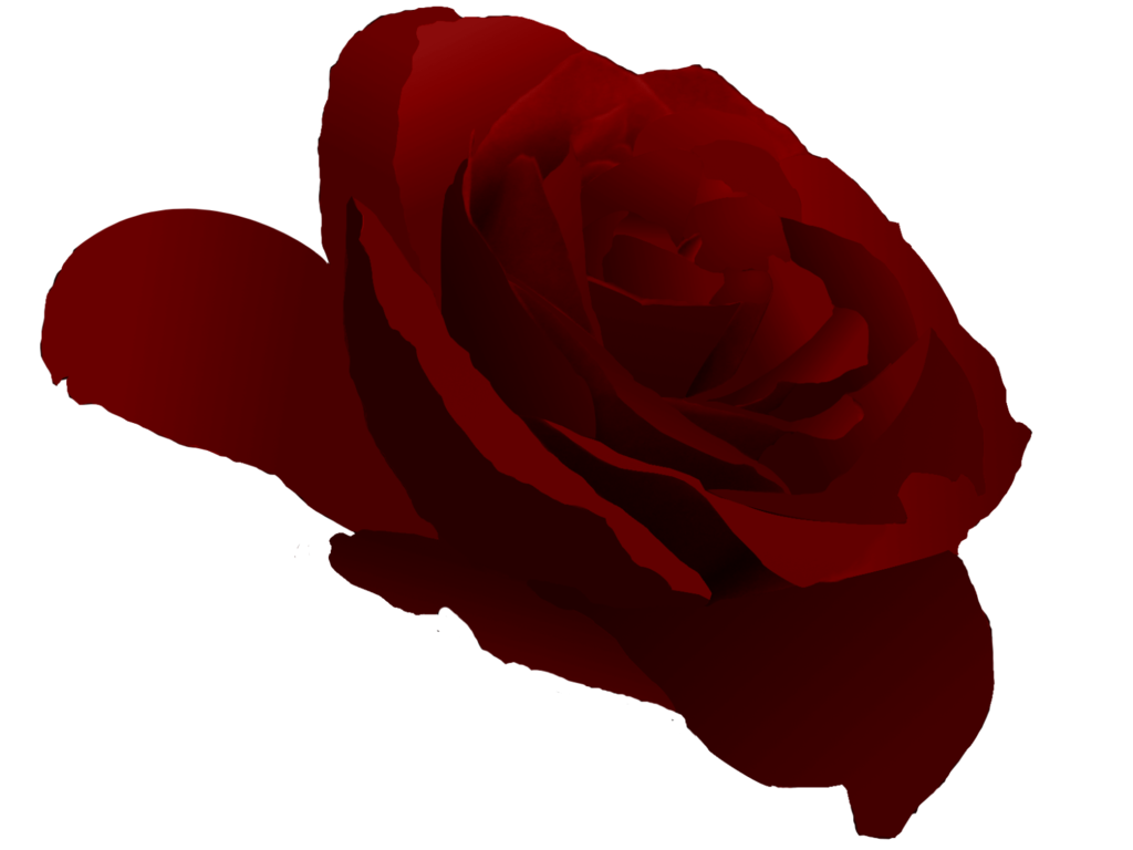 1024x768 Crimson Rose Vector By Wistfulwish