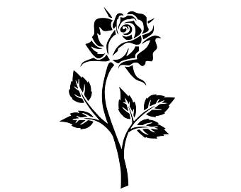 340x270 Vector Roses Etsy