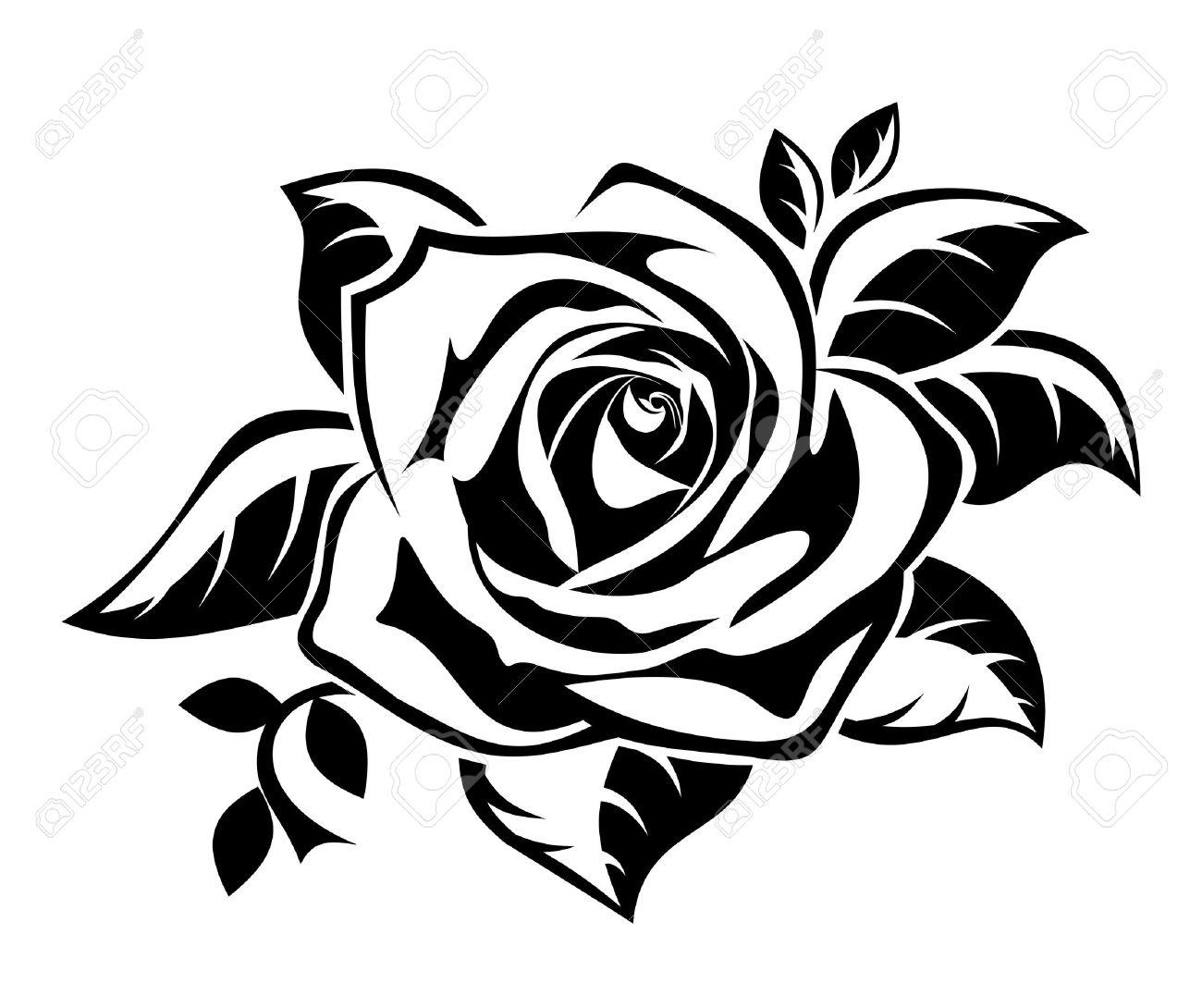 1300x1090 White Rose Clipart Rose Outline