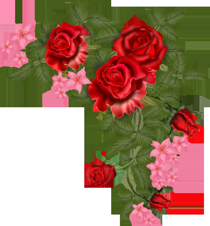 695x750 Flowers