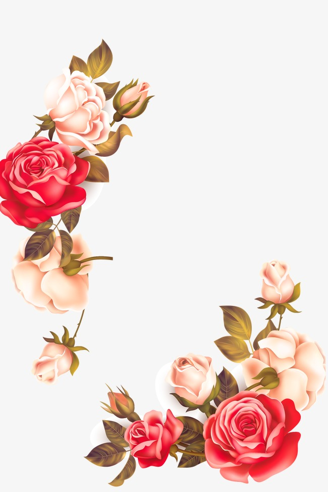 650x973 Flower Vectors, 47,585 Graphic Resources For Free Download