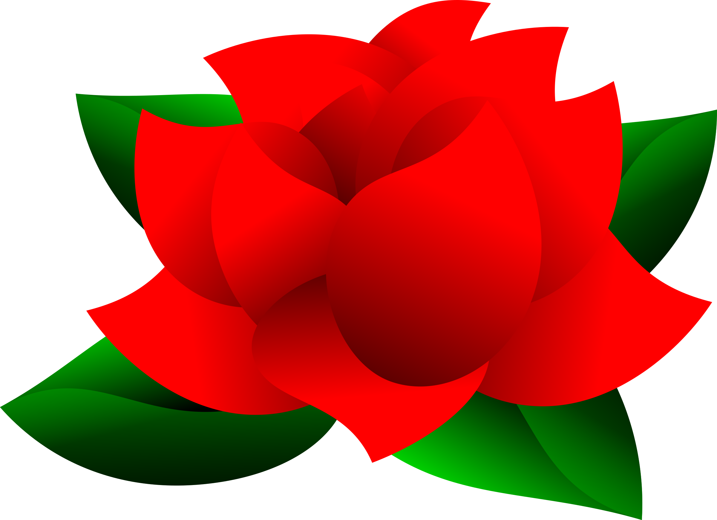 2400x1739 Free Stock Photo Of Insomniac Rose Vector Clipart