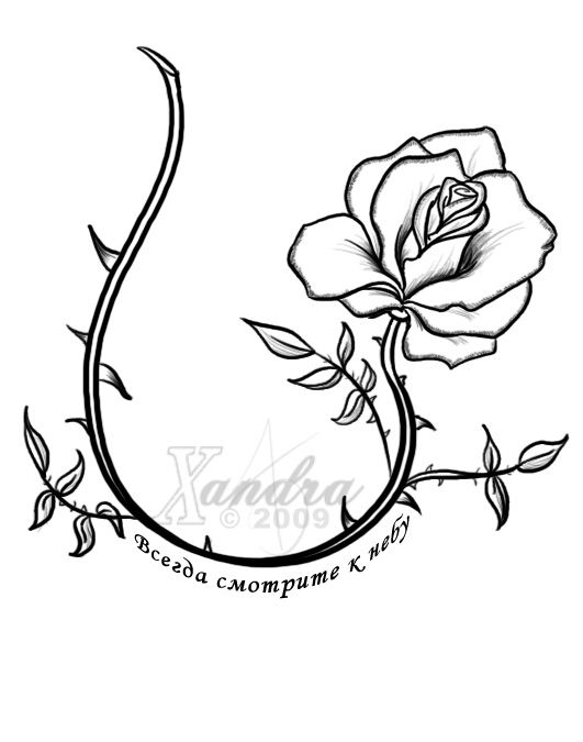 531x675 Best Rose Vine Tattoos Ideas Rose Vines, Rose