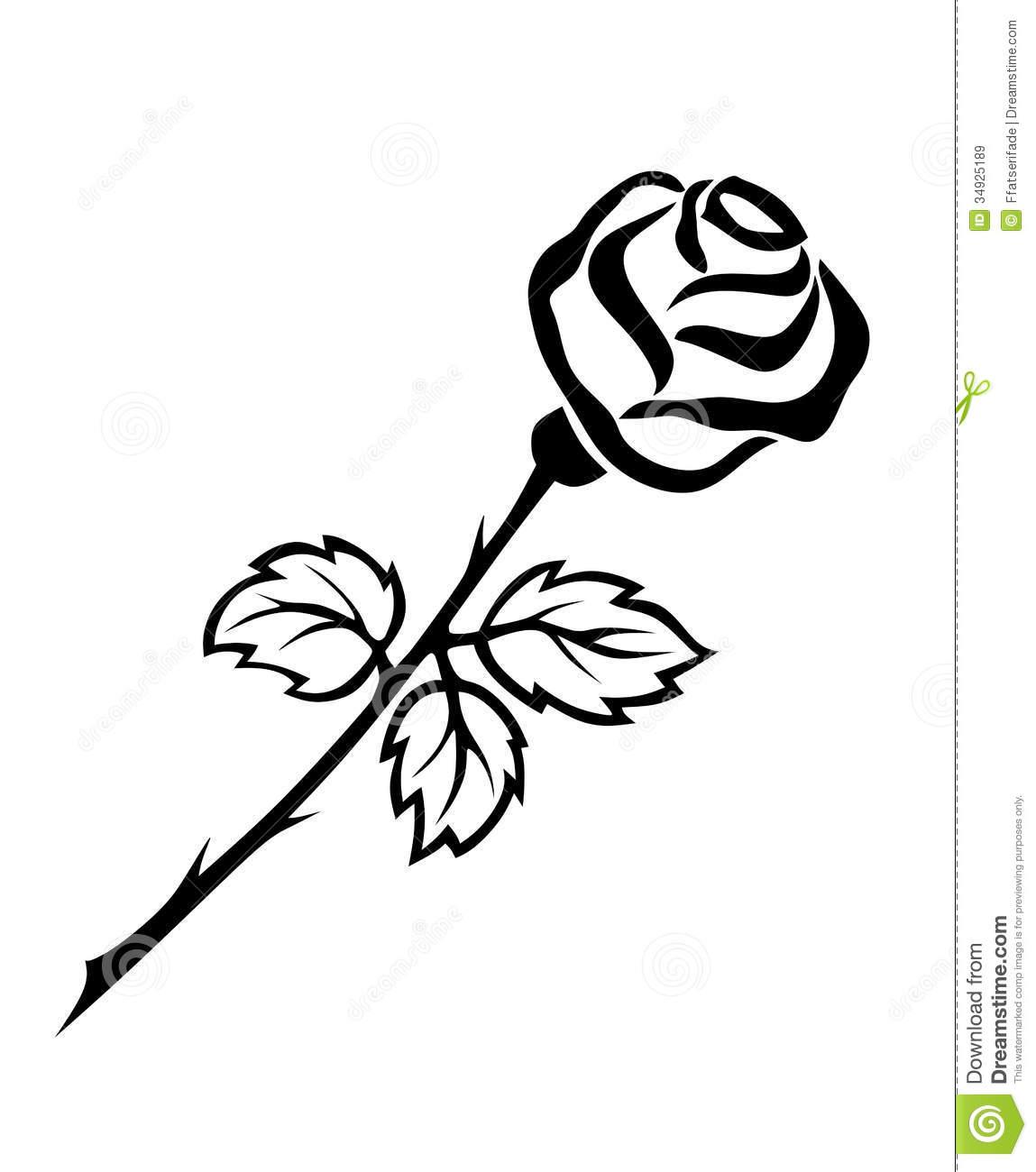 1149x1300 Hoontoidly Single Black Rose Drawings Images