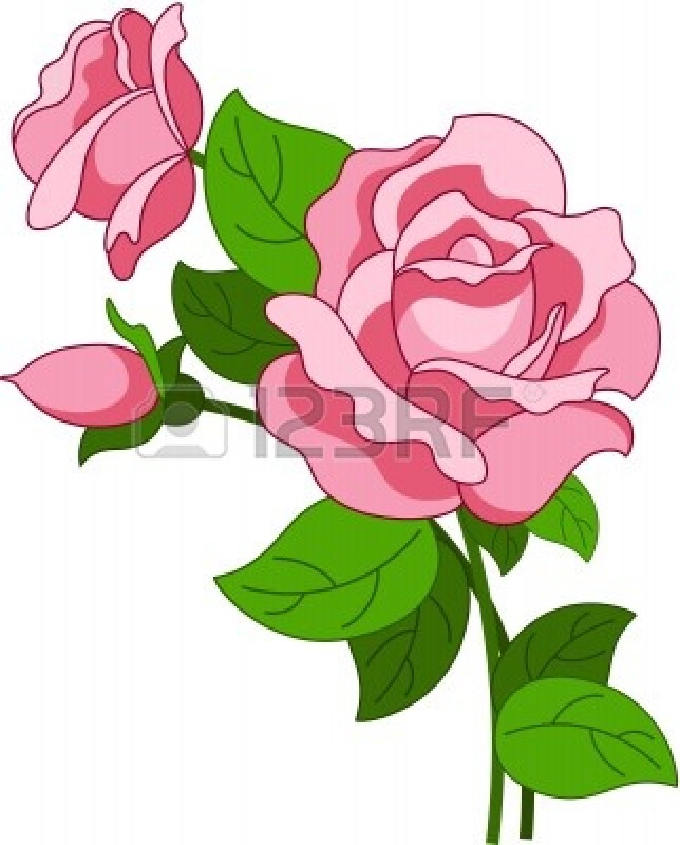 966x1200 Pink Rose Clipart Animated
