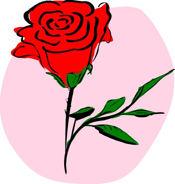 564x594 Red Rose Clip Art