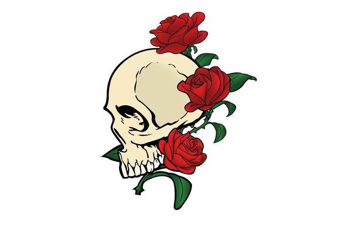700x490 Vector Skull Ampamp Roses