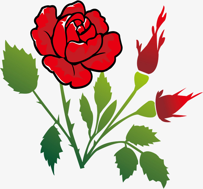 650x607 Roses With Thorns, Cartoon Illustration, Barbed, Beautiful Png