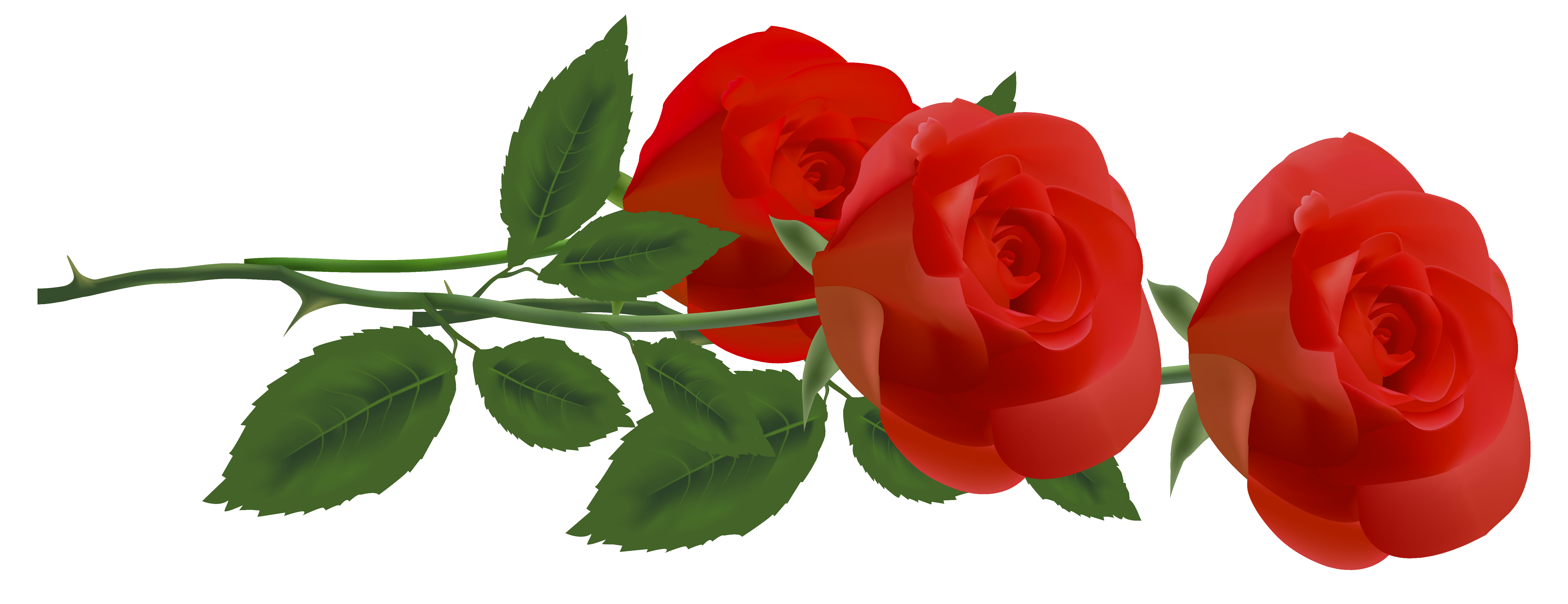 Roses Clipart Free   Free download on ClipArtMag
