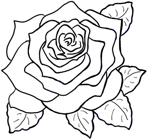 500x473 Coloring Pages Winsome Pics Of Roses To Draw Rose Drawings Heart