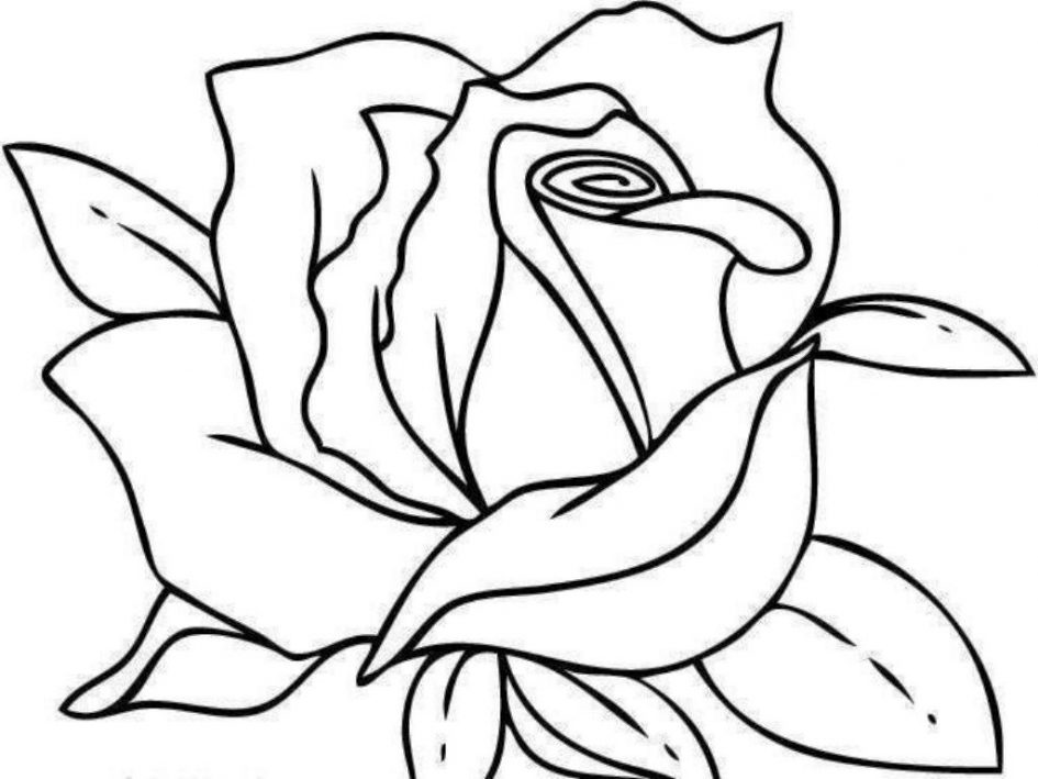 945x709 Download Coloring Pages Roses Coloring Pages Free Coloring Pages