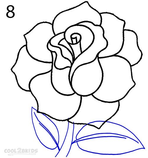 500x536 189 Best Roses Images Mandalas, Artists And Artworks