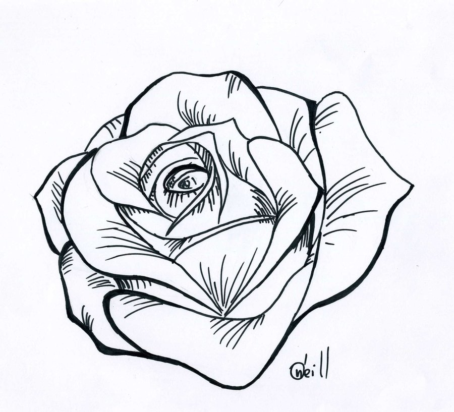 Simple Rose Tattoo Outline: Free Download On ClipArtMag
