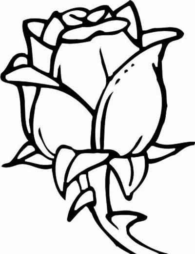 400x520 143 Best Coloring Pages Images Alphabet Cards, Book