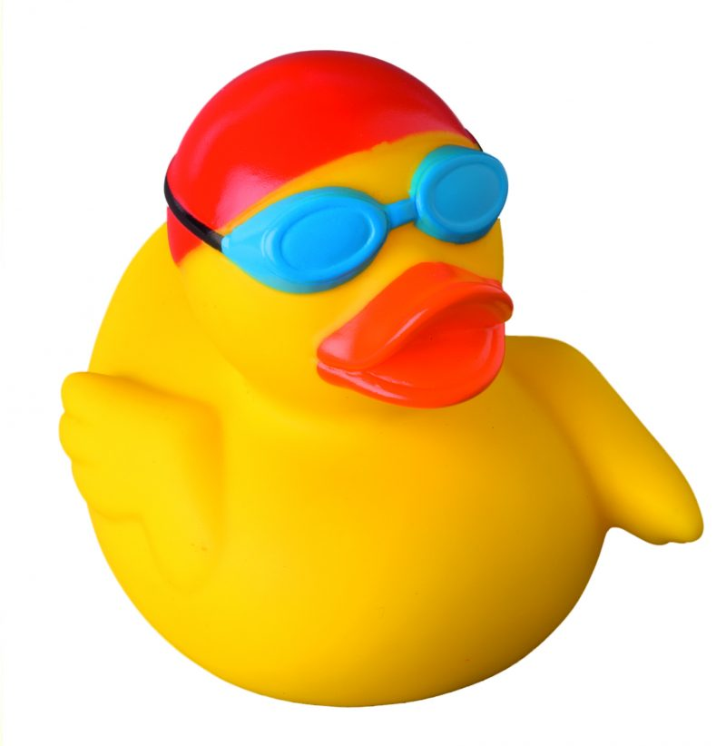 800x822 Swimmer Rubber Duck Buy Premium Rubber Ducks Online