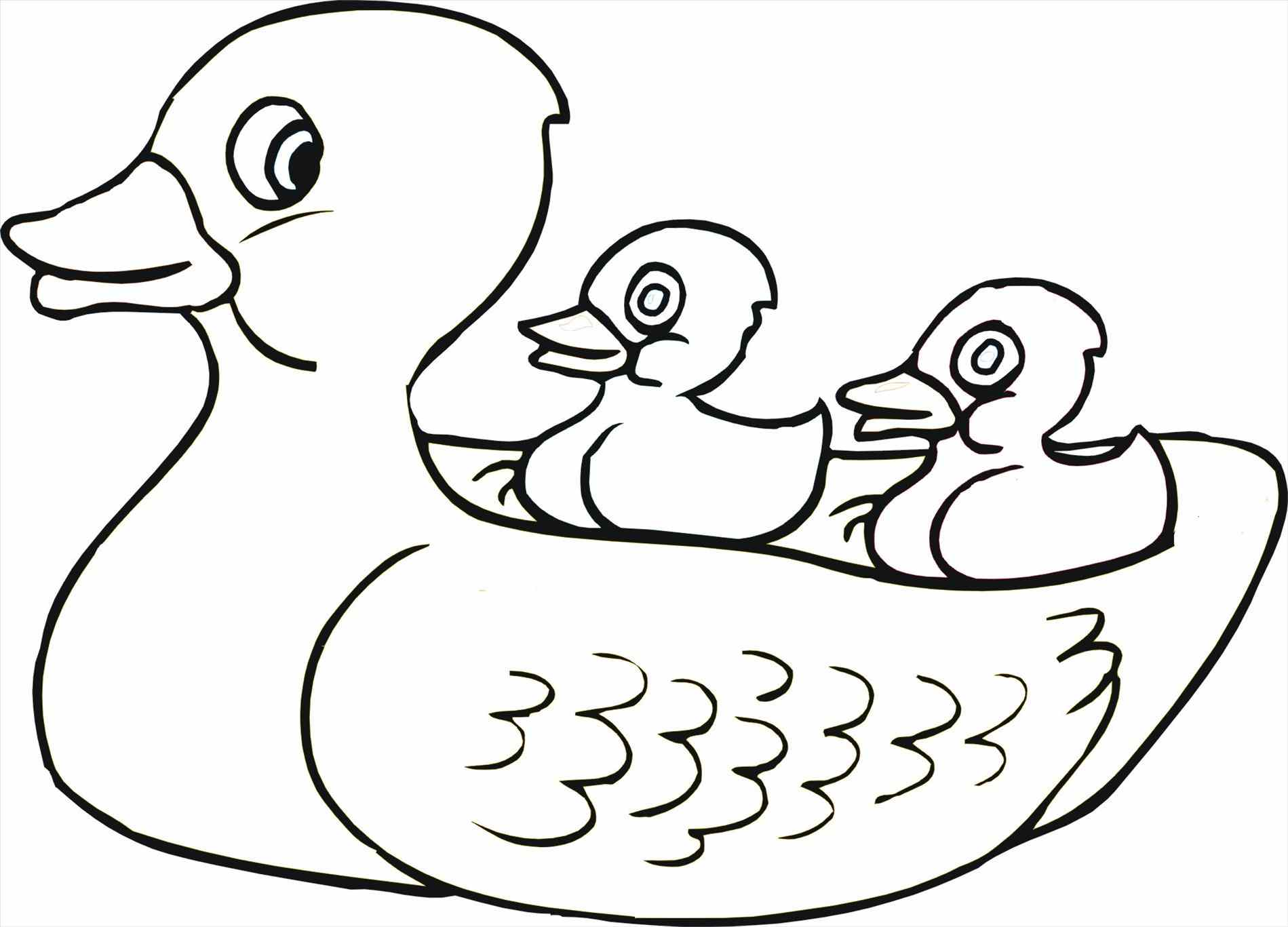 Rubber Duck Outline Free download best Rubber Duck Outline on
