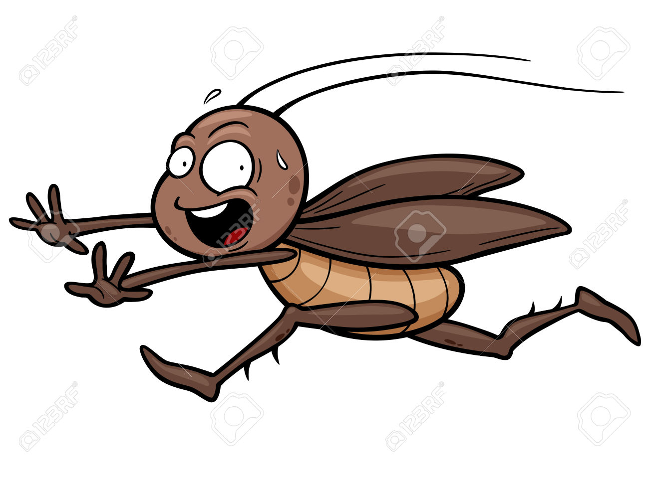 1300x975 Cartoon Clipart Cockroach