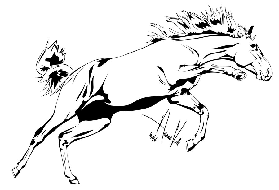 900x611 Horse Outline