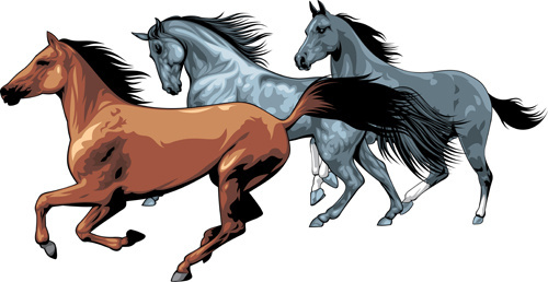 500x258 Running Horse Outline Free Vector Download (5,770 Free Vector)