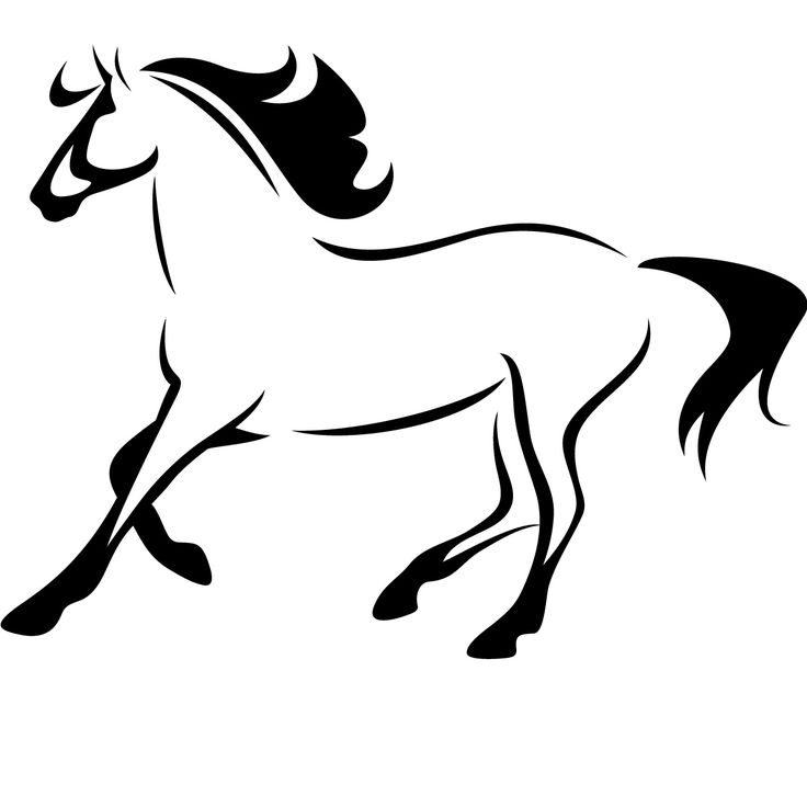 736x736 Drawn Horse Outline Drawing