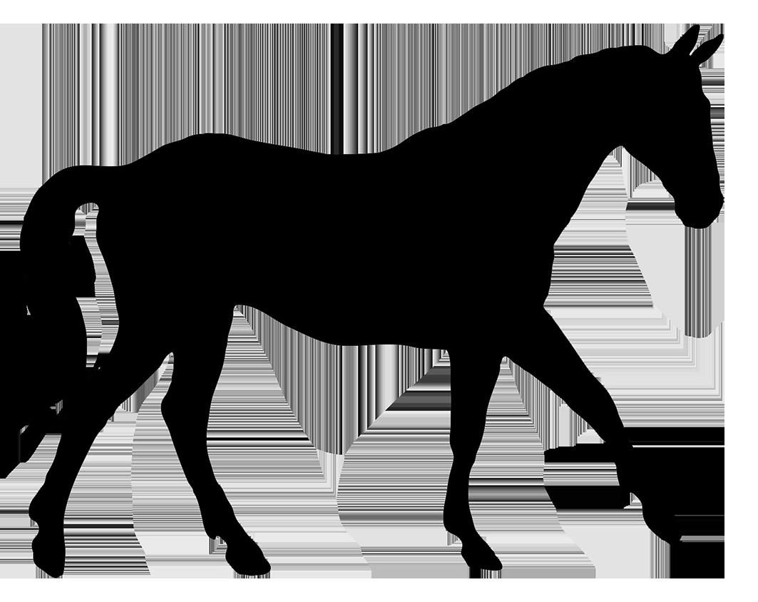 1063x844 Horse Silhouette Clip Art