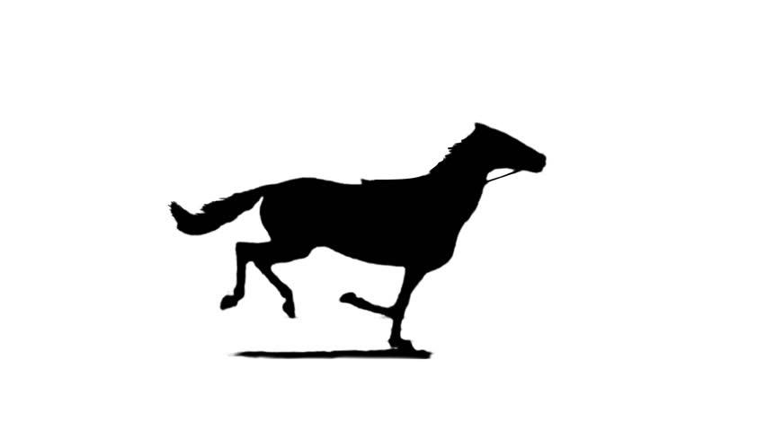 852x480 Running Horse Silhouette ( Seamless Loop ) Stock Footage Video