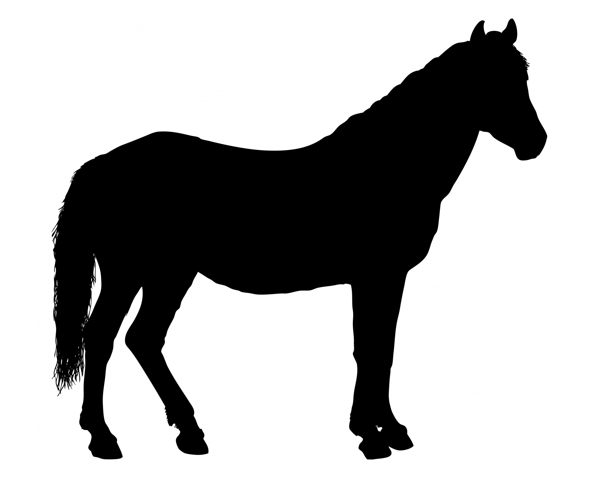 1920x1535 Running Horse Silhouette Images