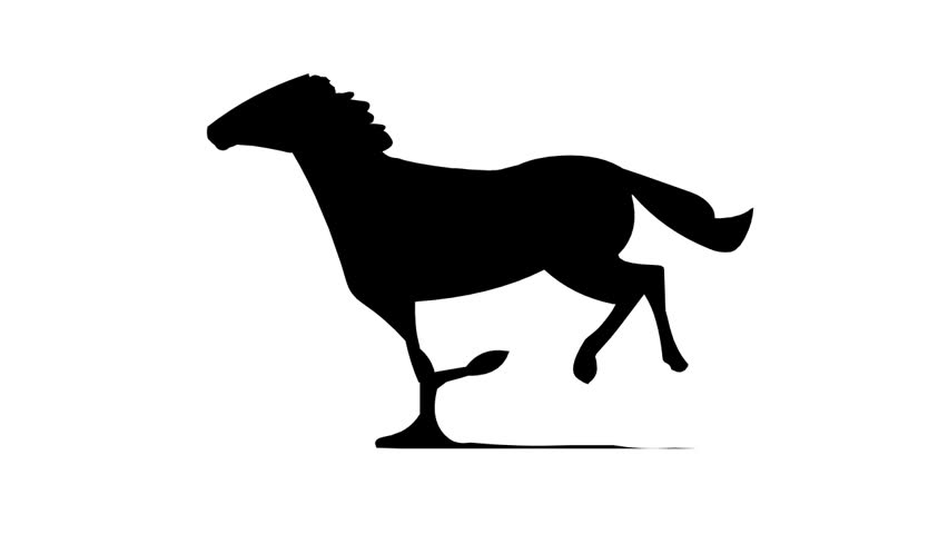852x480 Horse Silhouette Stock Footage Video 154567 Shutterstock