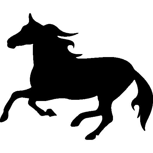 512x512 Horse Silhouette