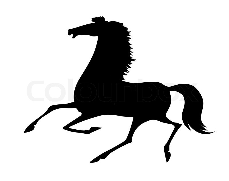 800x631 Vector Silhouette Running Horse On White Background Stock Vector