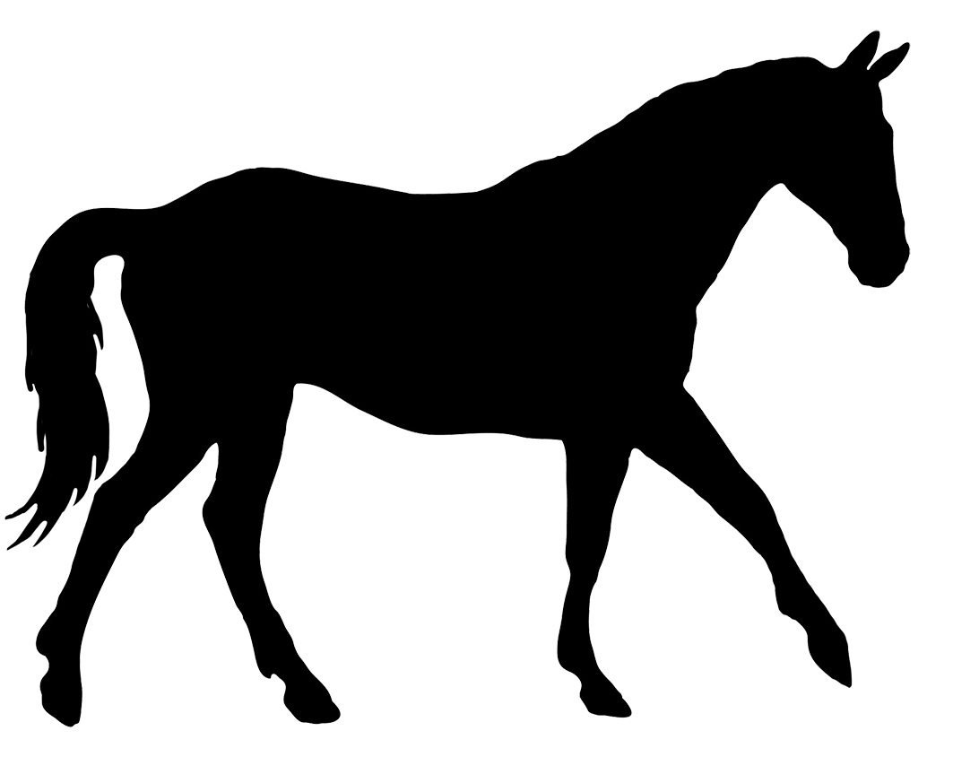 1063x844 Horse Silhouette Related Keywords Amp Suggestions