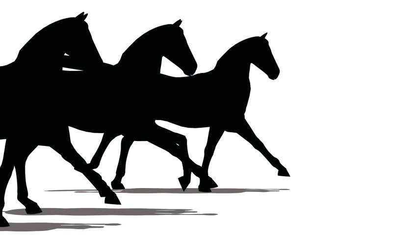 852x480 Three Horses Run, Black On White. Stock Footage Video 922474