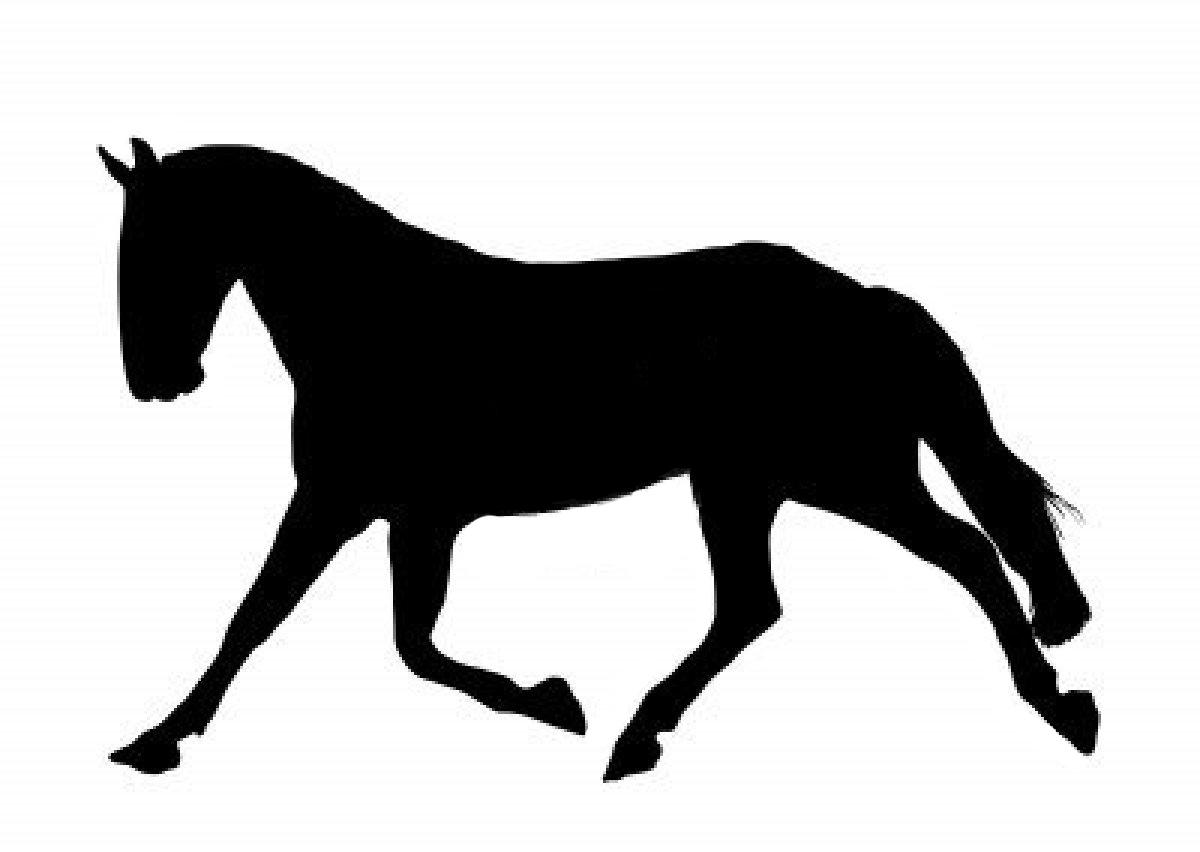 1200x852 Horse Crafts