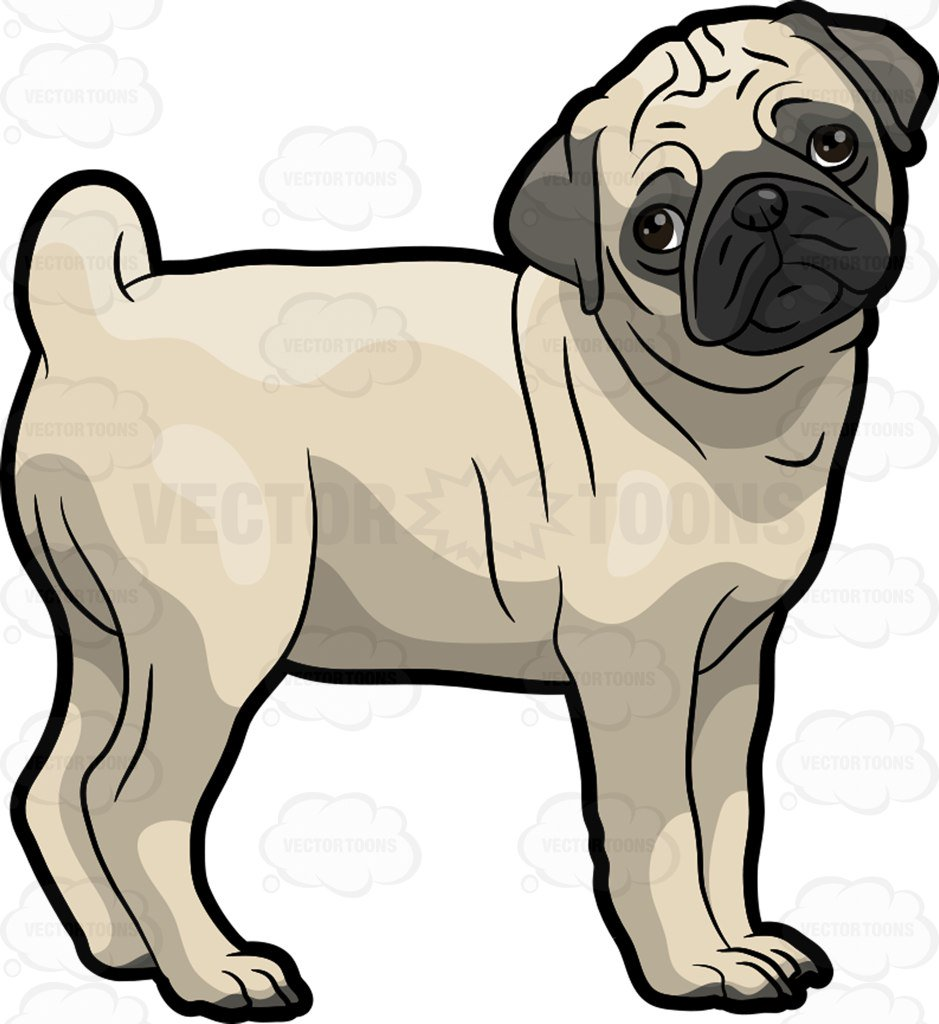 939x1024 A Sad Pug Dog Cartoon Clipart
