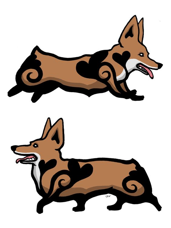 563x750 Corgi Clipart Sad Animal