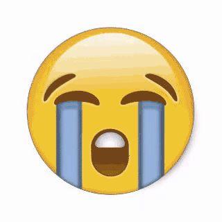320x320 Best Crying Emoji Ideas Funny Emoji Faces
