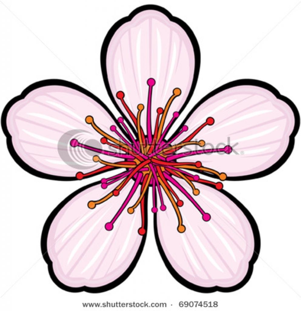 993x1024 Sakura Clipart Sakura Flower