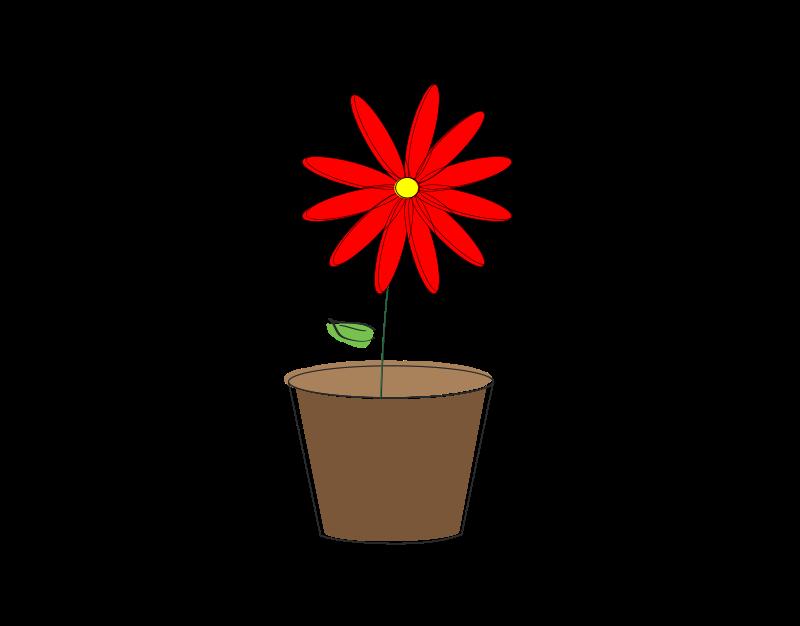 800x626 Blossom Clip Art Download