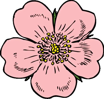 440x420 Blossom Flower Clip Art, Free Blossom Flower Clip Art